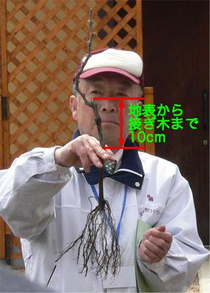 Azumino0073