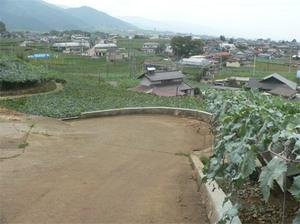 Katsu0095